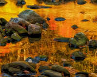 Golden reflections. Colorful fall colors reflecting in creek Royalty Free Stock Photos