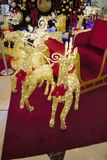 Golden reindeers near Christmas tree and sledge Royalty Free Stock Photos