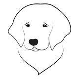 Golden Retriever. Stylized illustration of golden retriever puppy portrait Stock Image