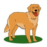 Golden retriever. Cartoon color illustration Stock Photo