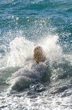 Golden retriever da cor do mel nas ondas do mar Imagens de Stock