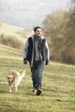 Golden retriever de passeio do homem no país Imagem de Stock Royalty Free