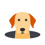 Golden Retriever dog on the hole,watching, vector illustration Stock Photography
