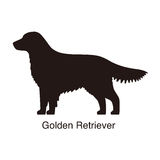 Golden retriever dog silhouette, side view, vector. Illustration Royalty Free Stock Image