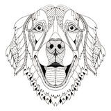 Golden retriever dog zentangle stylized head, freehand pencil, h. And drawn, pattern. Zen art. Ornate vector. Print for t-shirts Royalty Free Stock Images