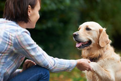 Golden retriever e proprietario dell'animale domestico che giocano insieme fuori Fotografie Stock