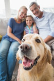 Golden Retriever with happy family at home Stock Images