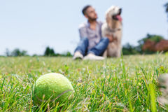 Golden retriever and his owner royalty free stock images