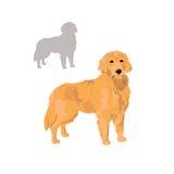 Golden retriever-Hund-illustrtion Lizenzfreies Stockfoto