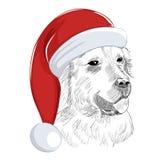 Golden retriever-Hund trägt Weihnachtshut Lizenzfreie Stockfotos