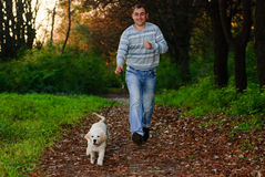 Golden retriever and man in park Royalty Free Stock Images