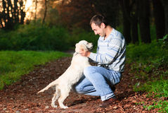 Golden retriever and man in park Stock Image