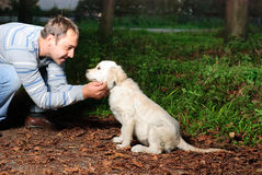 Golden retriever and man in park Stock Photo