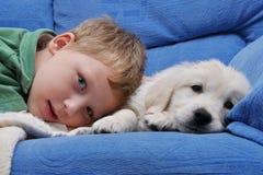Golden retriever puppy with boy. My puppy it´s my best friend stock image