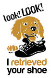 Golden Retriever. Simple golden retriever illustration. Good for a T-shirt design Stock Photo