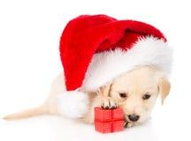 Golden retriever szczeniaka pies z prezentem i Santa kapeluszem odosobniony Zdjęcie Stock