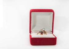 Golden ring royalty free stock photos
