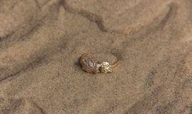 Golden ring lying on the sand under water royalty free stock photos