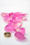 Golden ring and pink rose petals as path Stock Photography