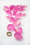 Golden ring and pink rose petals as path Royalty Free Stock Photos