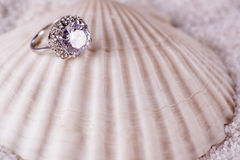 The golden ring and sea shell Royalty Free Stock Image