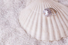 The golden ring and sea shell Stock Images