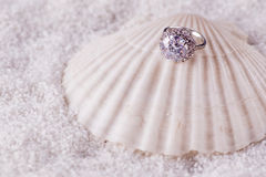 The golden ring and sea shell Royalty Free Stock Photo