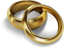 Golden rings. A couple of golden wedding rings Stock Photography