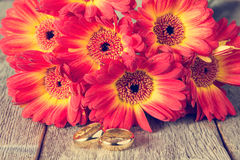Golden rings with gerberas Royalty Free Stock Image