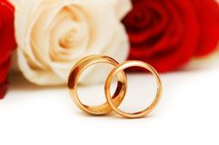 Golden rings and roses Royalty Free Stock Photos