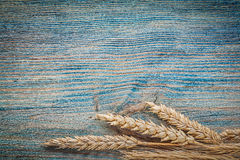 Golden ripe wheat ears on vintage wood board horizontal image Stock Image