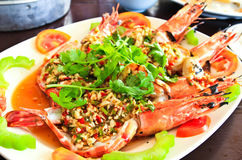 Golden river prawn with garlic and pepper sauce. Stock Photography