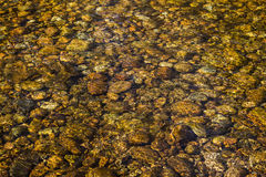Golden Riverocks. Rocks submerged beneath river bathed in golden sunlight Stock Photo