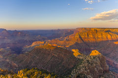 Golden Rocks of the Grand Canyon in Sunset Royalty Free Stock Photography