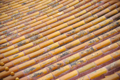 Golden roof tiles Royalty Free Stock Images