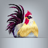 Golden rooster with purple tail feathers Royalty Free Stock Photo