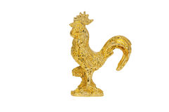 Golden rooster royalty free stock image