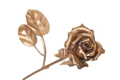 Golden rose. The photo of beautiful iron rose on white background Stock Photography