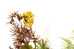 Golden rose Royalty Free Stock Image