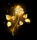 Golden Rose Royalty Free Stock Photos