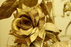 Golden rose Royalty Free Stock Images
