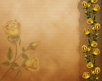 Golden roses. Graphic of golden roses 1 Stock Photo