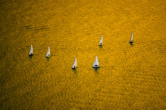 Golden sea. Sailboats of a sailingschool in a golden sea Stock Photo