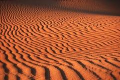 Golden sand. Dubai desert safari during our client tour Royalty Free Stock Image