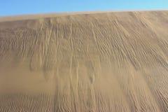 Golden sand of african desert stock photography