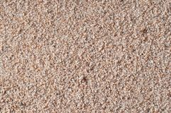 Golden Gritty Sand Closeup Background Texture Royalty Free Stock Photos