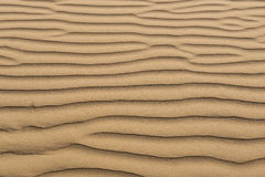Golden sand background Royalty Free Stock Photo