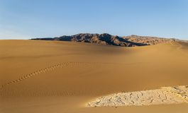 Golden Sand Dunes Stock Photos