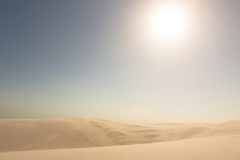 Golden sand dunes. Golden sand dunes in the midday sun Stock Photos