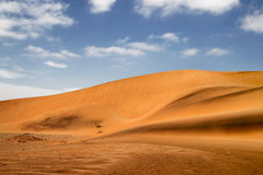 Golden sand dunes Stock Photography